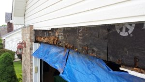 Water damage over garage door